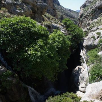Το φαράγγι του Κουρταλιώτη παρουσιάζει μόνιμη ροή νερού σχεδόν όλο το χρόνο.