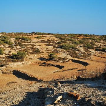 Cultivations in Gavdos island
