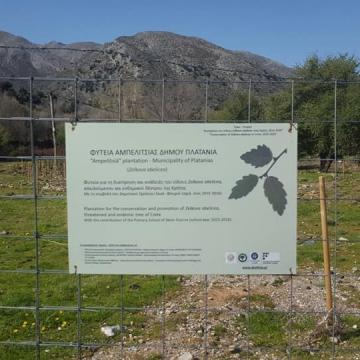 Επίσκεψη στην καλλιέργεια Αμπελιτσιάς