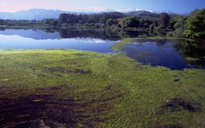 Η λίμνη Αγυάς, στο βάθος τα Λευκά Όρη.